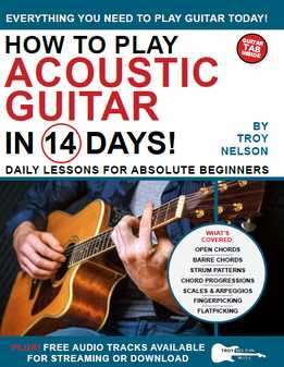 Troy Nelson - How To Play Acoustic Guitar In 14 Days - Daily Lessons For Absolute Beginners
