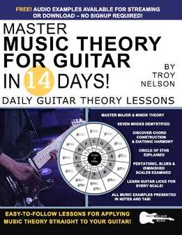 Troy Nelson - Master Music Theory For Guitar In 14 Days - Daily Guitar Theory Lessons